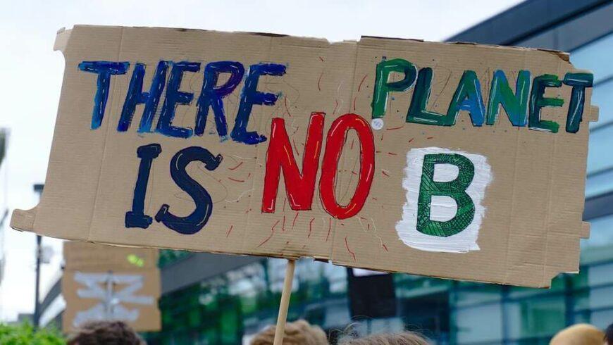 Fridays for future: cosa sta cambiando a Pisa per il bene dell'ambiente?
